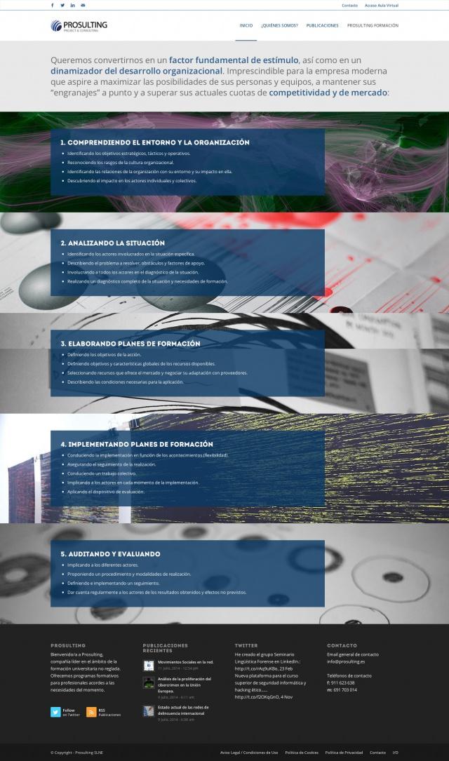 Sección de la web de prosulting