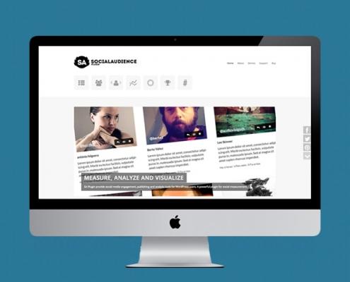 vista en ordenador de la web de social audience plugin miniatura