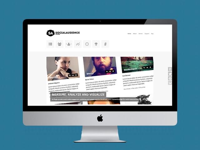 vista en ordenador de la web de social audience plugin